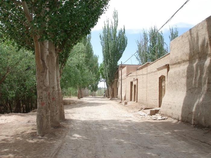 カシュガルの田舎道