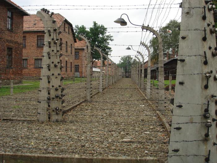アウシュビッツの鉄条網