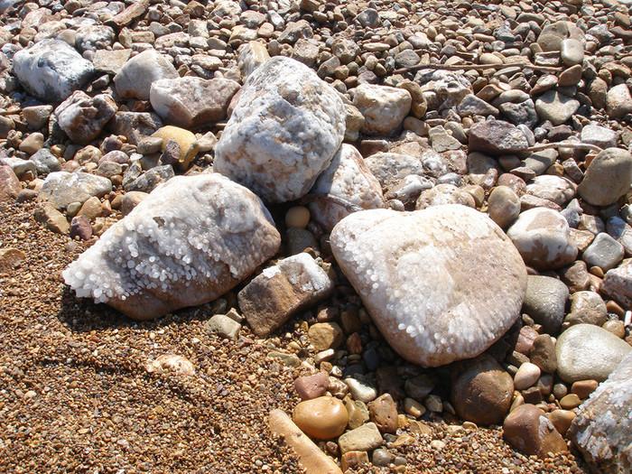 死海のほとりは塩まみれ
