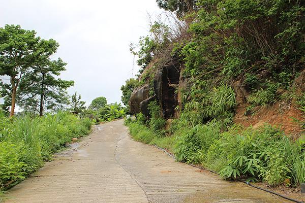 プレアヴィヒア遺跡までの登山道
